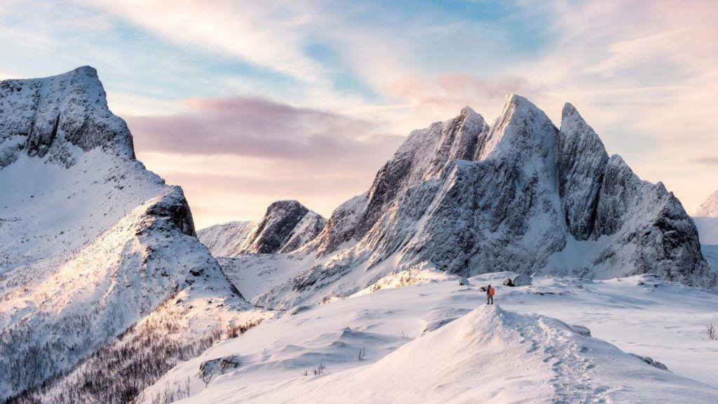 david brooks second mountain